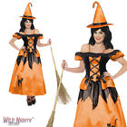 Halloween Fancy Dress # Ladies Storybook Witch Costume Size 8-18