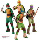 TMNT Boys Teenage Mutant Ninja Turtles Childrens Fancy Dress Ages 3-10
