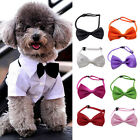 Pet Dog Cat Handsome Cute Bowknot Adjustable Necktie Collar Bow Tie 8 Color Gift