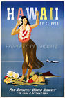 Pan Am Airline vintage retro print poster, large 4 sizes available, Airline 114