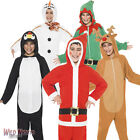 FANCY DRESS # CHRISTMAS BOYS / GIRLS ONESIE COSTUMES AGE 4-12