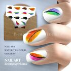 Beautiful Colorful Feather  Nail Art Nail Decals Water Transfer Stickers-019