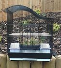 QUALITY MEDIUM BUDGIE CANARY FINCH BIRD CAGE BLACK & WHITE PERCHES FEEDERS DY613