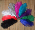 Wholesale Natural OSTRICH FEATHERS 10-12'inch 9 kinds Color Selection-u92