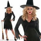 Adults Ladies Classic Traditional Wicked Witch Halloween Fancy Dress Costume