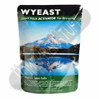 Wyeast 1728 Scottish Ale Liquid Home Beer Brewing Yeast Homebrew PRIORITY SHIP