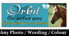 Photo HORSE PONY MEMORIAL Plaque sign + mount options garden stables wall marker