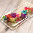 XMG Natural Real Pressed Flower Bling Hard Skin Case Cover For Samsung iPhone