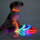 LED Light Pet Dog Flash Collar Leopard Nylon Safety Buckle Neck Band Adjustable