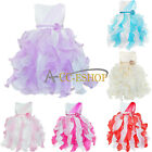 Baby Girls Kid Princess Wedding Bridesmaid Party Pageant Flower Bow Tulle Dress