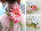 NEW Puppy Pet Dog princess Small Dog summer clothes apparel costume lace dress