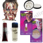 HALLOWEEN ZOMBIE FAKE BLOOD LATEX PAINT SPIRIT GUM SPECIAL EFFECTS FANCY DRESS