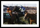 Auroras Encore 2013 Grand National Winner Horse Racing Photo Memorabilia (849)