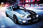 New Ford Shelby GT500 Dream Machine Poster