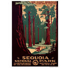 Sequoia National Park Wall Decal Retro Travel Polyester Fabric Sticker 12-48