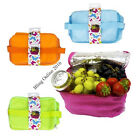 SMALL COOLER COOL BAG LUNCH PICNIC CAR BEACH TRAVEL INSULATED CARRY HANDLES COLD