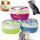PET BRANDS MINIMALS MED ANIMAL RAT GUINEA PIG REPTILE HOLIDAY VET CARRIER CLRS