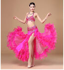 D003 Deluxe Belly Dance Costume Outfit Set Bra Belt Rio Carnival Oriental 2 PCS