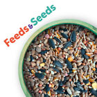 Wild Bird Seed Feed Mix,  Year Round,   ...