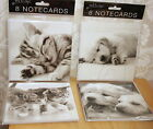 Set 8 notecards,Kittens or Puppies,Great for any occasion or Just to say hello!