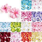 50pcs 76x35mm Artificial Plumeria Frangipani Flower Heads Wedding Decoration