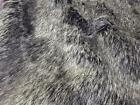 Super Luxury Faux Fur Fabric Material - GREY BADGER