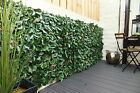 Tropical Ivy artificial hedge tiles. Garden Screening 50cm x 50cm