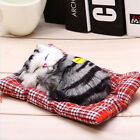 Simulation Doll Stuffed toy Sleeping cat Birthday gift With sound toy Decor doll