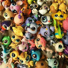 Littlest pet shop Animals Dog Cat Terier Figures, Lot Of 30/20/10, UK SELLER