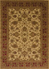 Ivory Traditional Oriental Carpet Floral Leaves Flowers Bordered Area Rug