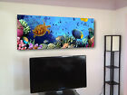 "Colorful fishes by reef underwater Huge giclee canvas print. 19""x50"" wide"