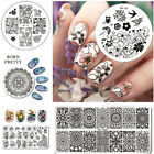 BORN PRETTY Nail Stamping Image Plates  Stencil Template Flower Theme