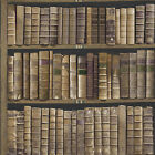 University of Oxford Trinity Library Book 33&#039; x 20.5&quot; Wallpaper Roll <br/> Direct from Wayfair