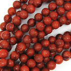 "Red Sponge Coral Round Beads Gemstone 15.5"" Strand 4mm 6mm 8mm 10mm 12mm"