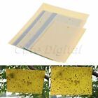 10 x Double-sided Insect Sticky Board Mosquito Killer Pest Control Trap Catcher