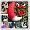 Anime Halloween Spice and Wolf Horo Cosplay Prop Costume Plush Ear Tail Hot