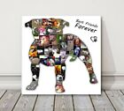 Dog Picture Photo Collage Canvas Print. Pet shape birthday present or gift