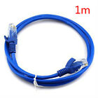 Popular 1 3 10m RJ45 CAT5 CAT5E Ethernet Lan Network Patch Cable for Internet HP