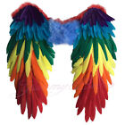 Yummy Bee Wings Fancy Dress Feather Carnival Pride Large Party Halloween Parrot