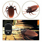 Simulation Infrared RC Remote Control Scary Creepy Insect Cockroach Scary Trick