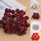 40 Pcs Mini Christmas Frosted Fruit Berry Holly Artificial Flower Art Decoration