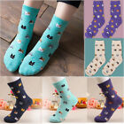 5 Colors 1 Pair Fashion Animal Cartoon Cotton Socks Women Lovely Cute Cat Socks
