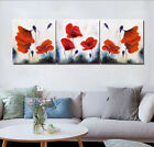 Vintage Poppy Flowers Grass Photo Painting Canvas Abstract Art Wall Decor Frame