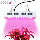 full spectrum led lighting - 1000W LED Grow Light Full Spectrum Lamp Panel Hydro for Indoor Veg Flower Plant