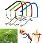 Soft Thin Steel Wire Parrot Bird Lead Leash Kit Anti-bite Flying Training Rope