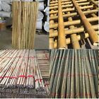 Strong Heavy Duty Professional Bamboo Plant Support Garden Canes | 2ft  to 7ft
