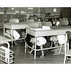 PS-58 School Hold and Take Cover Drill, Brooklyn, NY, 1962 Cold War Photo Print