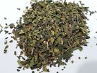 Stinging Nettle Leaf Tea (Urtica Dioica) LOCAL Organic (From USA) + SEEDS