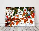 autumn leaves orange and green and white printed framed canvas picture landscape