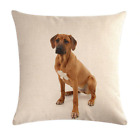 DOG / CAT Cushion Covers! 16 DESIGNS 45cm Puppy Kitten Throw Photo Pillow Gift